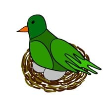 Vogelnest