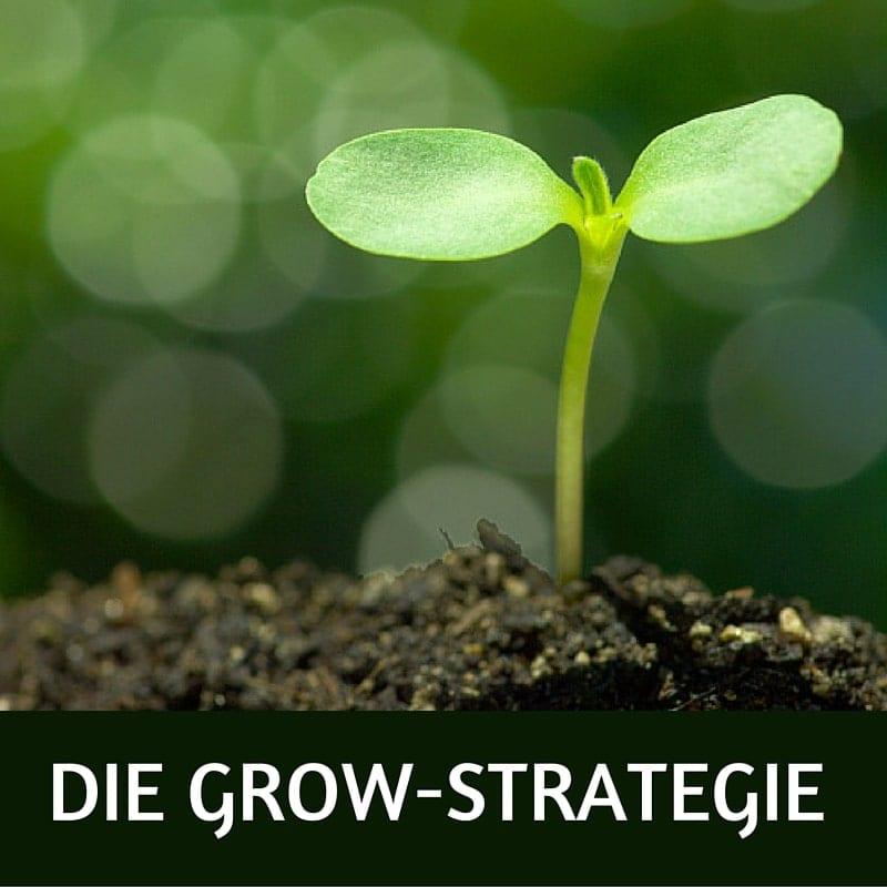 DIE GROW-STRATEGIE