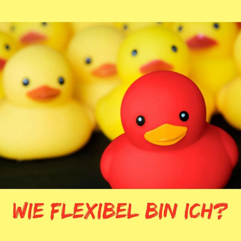 Wie flexibel bin ich