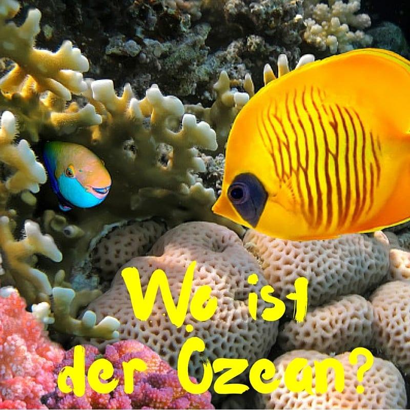 Wo ist der Ozean