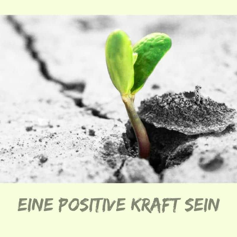 positive-kraft