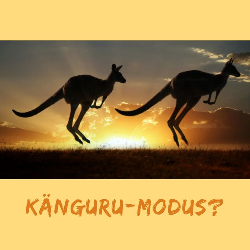 Känguru-Modus