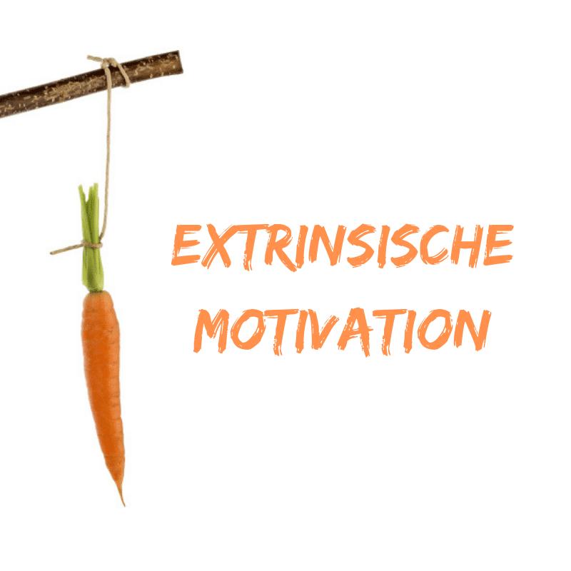 extrinsische Motivation