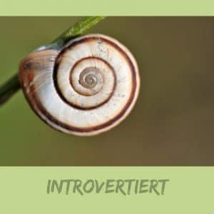 Introvertiert