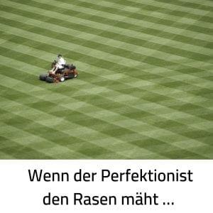 Perfektionismus Rasen